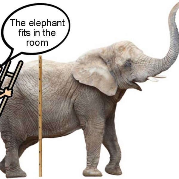 """A man measuring the height of an elephan with a speach caption """"The elephant fits in the room"""" despite having missed the elephant's head - illustrating the idea of intrinsic uncertainty"""