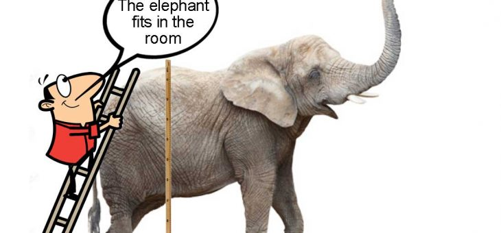 Intrinsic Uncertainty: The Elephant in the Room